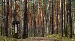 Tatrzański Park Narodowy pozostaje zamknięty