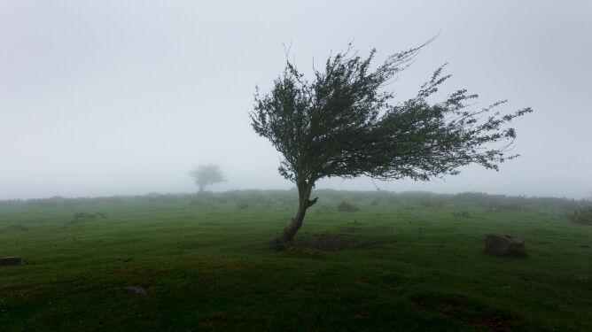 Dziwne, nietypowe zjawiska pogodowe