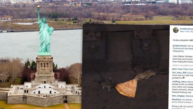 Szczury z Nowego Jorku biją się o pizzę
